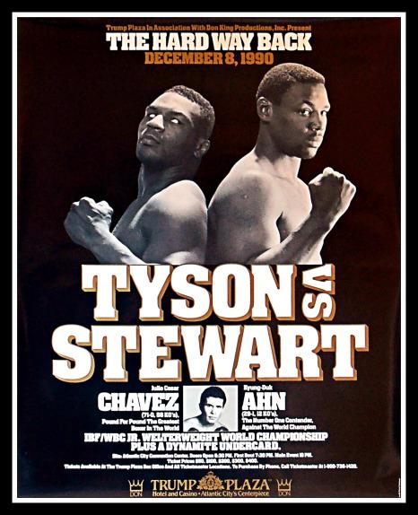Tyson vs. Stewart